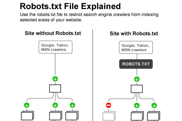 Site With Robots.txt File